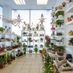 Gėlių parduotuvės fotografija